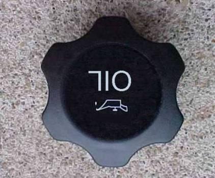 710.jpg